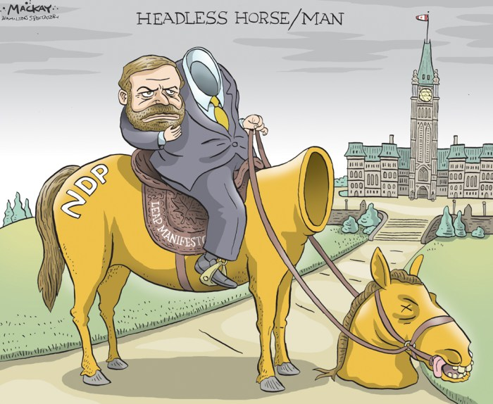 "Editorial Cartoon by Graeme MacKay, The Hamilton Spectator Ð Tuesday April 12, 2016 Mulcair 'a lame duck,' says political scientist on NDP convention results Tom Mulcair wanted a robust vote for his NDP leadership at this weekend's party convention in Edmonton in order to stay on as leader. He got something less, with 52 per cent of delegates voting yes to a leadership race. ""I think that was going to be a difficult leadership review for him but I never imagined he would get as low a number as he got. I was thinking somewhere in the 60s but not 48 per cent,"" Bratt tells CBC News. ""To put this into context the last time a major federal party leader lost a leadership review was Joe Clark in 1983. Joe Clark got 67 per cent support."" Bratt says the defeat can be, in part, attributed to disappointing federal election results in October. ""He was leading in the polls when the campaign began and they ended up as the third place party,"" Bratt said. ""But second, he moved the party more towards the centre, particularly on budgets. He said they were going to run a balanced budget, and allow the Trudeau Liberals to outflank them on the left. So I think there was opposition within his party about how he lost and why he lost."" Mulcair has said he would stay on as interim leader until a new leader is chosen, which could take up to two years. ""He is a lame duck. This isn't a case like Rona Ambrose who is the interim leader of the Conservatives. This is a very different situation where he has been publicly defeated by his party yet continues to lead them. Once that is done I think Mulcair's political career is over."" Bratt said at the top of the list of conflicts the next leader will face is a document pushing for a very different approach to environmental issues than the status quo. ""The other major division within the party besides over leadership was over this Leap Manifesto which is a very radical document, significantly altering capitalism, getting rid of fossil fuel"