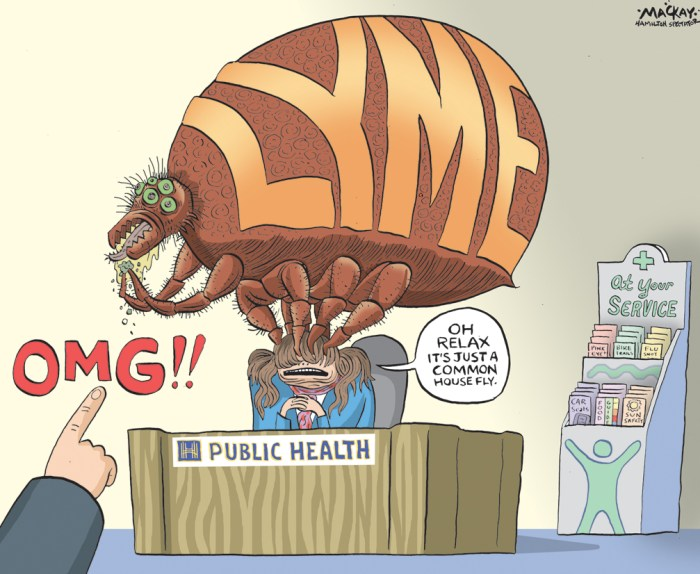 "Editorial Cartoon by Graeme MacKay, The Hamilton Spectator Ð Tuesday April 26, 2016 Ticks that spread Lyme disease are in Hamilton, warns study Ticks that spreadÊLyme diseaseÊare in Hamilton warnsÊa studyÊaccusing the public health department of ""under-reporting"" the danger and giving ""the false impression"" acquiring the illness here is unlikely. ""Lyme disease-carrying black-legged ticks pose a public health risk in the Dundas area and the surrounding Hamilton-Wentworth region,"" concludes the research byÊLyme OntarioÊpublished in the International Journal of Medical Sciences.Ê A Lyme Ontario researcher found 41 per cent of black-legged ticks collected in Dundas over two years were infected with Borrelia burgdorferi Ñ the bacteria that causes the disease. The results are in stark contrast to a report by Hamilton Public Health Services finding no infected ticks during a five-year period in an area 20 times the size, states the study. ""We point out the difference between what the health unit is saying and what we found out in the field,"" said lead researcher John Scott. ""There is a notable difference É of over 600 times. I would say their surveillance program isn't working."" The study calls for tick and Lyme disease warning signs, deer management strategies and advisories to health-care providers.Ê ""Public Health Services appreciates the work of local researchers with respect to black-legged ticks in Dundas,"" said Dr. Jessica Hopkins, an associate medical officer of health, in a statement. ""We have just become aware of the recent publication and are in the process of understanding the study and its implications."" Hamilton is not listed as a Lyme disease risk area byÊPublic Health Ontario.Ê Local doctors and hospitals were told ""Hamilton is not an endemic area and acquiring Lyme disease in the Hamilton area is unlikely"" in aÊmedical advisoryÊfrom the city's public health department in August 2013 Ñ the same time the Lyme Ontario researchers were finding infect"