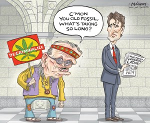 Drug policy for elora jean