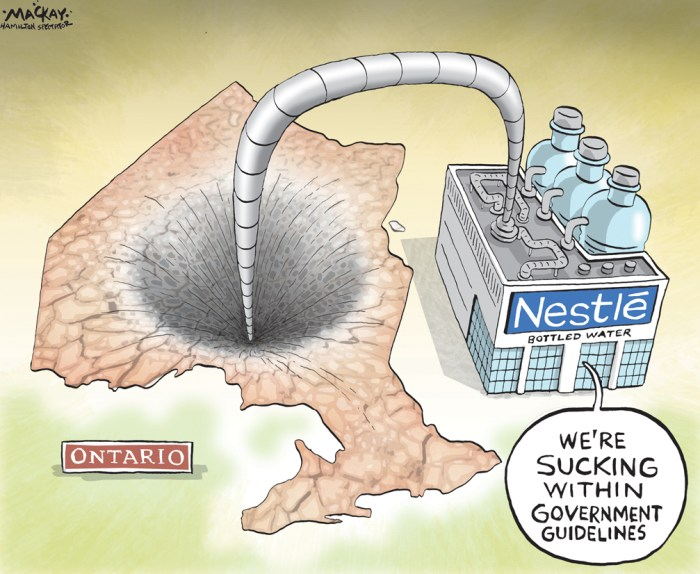 "Editorial Cartoon by Graeme MacKay, The Hamilton Spectator Ð Thursday August 25, 2016 New permit for Nestle water-taking at low rate 'inappropriate': Wynne Bottled water companies in Ontario may soon have to pay more and take less water as public outcry over revelations that the province charges them just $3.71 for every million litres triggered a government review. There is a difference between taking water for agricultural or industrial use and taking it to sell bottled water, Premier Kathleen Wynne said Wednesday. Some of the conditions of the permits for bottled water use are outdated, she said. ""There's the issue of the quantity of water that's taken, there's the issue of the cost of that water,"" Wynne said. ""Also, there's an issue around the timing. As we all know, it's been a dry summer and so I think we need to look at what are the right triggers in place in terms of quantities that are allowable given the conditions.Ó Wynne has asked Environment Minister Glen Murray to review permit conditions for bottled water companies. It will look at whether there is a sufficient price on removing water, he said. ""I think for some of the folks that are removing it and taking it away, that they got a really sweet deal,"" he said. ""Maybe too sweet a deal.Ó Environmental group Wellington Water Watchers is urging Ontario not to renew a permit for Nestle Waters in Aberfoyle, Ont., that expired on July 31. It's upset that the company has been allowed to keep extracting water from a local well in the midst of a severe drought in the province. A water-taking permit remains in force if a renewal application is made at least 90 days before it expires. ""Quite frankly, that window gives us an opportunity to look at what should change, rather than issuing a new permit under the same parameters as the former permit, which I think would not be appropriate,"" Wynne said. Times have changed, she said. ""Thirty years ago, we wouldn't have envisioned an industry that took water a"