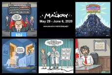 May 29 - June 4, 2020