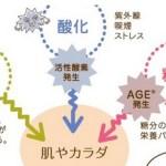水素イオンは細胞の酸化の要因のひとつ,対策は