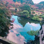 とりいそぎ,新宿御苑の紅葉と神宮外苑の銀杏