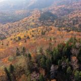 北海道の紅葉, 銀泉台をドローンで空から眺めてみた,大雪山国立公園,