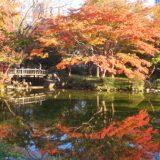 日比谷公園、紅葉、満開でした。2019.11.29 東京
