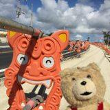 【沖縄】ハイドラ・チェックポイント、緑化作戦、その2 2015年11月