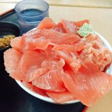 豪快!! マグロ丼、こんな山盛りで1000円!?? 三重県 大遠会館
