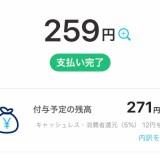 【PayPay】タダで買い物できたうえにお金が増えてる〜((o(^-^)o))