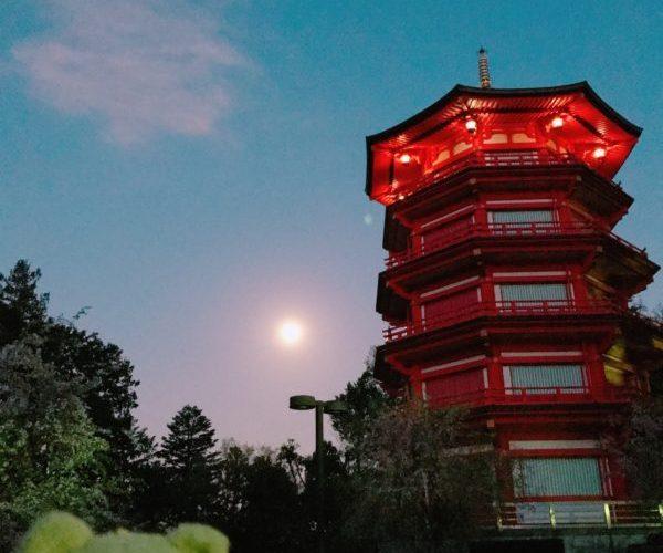 【スーパームーン】地球にもっとも近い満月を埼玉の金乗院で眺める、2020年4月8日  次回は2016年