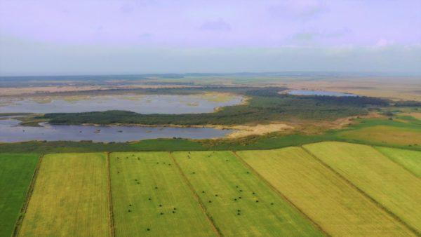 ペンケ沼 北海道 サロベツ原野 渡り鳥 ドローン空撮 ドライブ 2019.10 Penke marsh Hokkaido Japan drone Sarobetsu wilderness