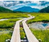 【尾瀬ヶ原】時期  5月から9月 行き方は、尾瀬戸倉から鳩待峠までバス、そして徒歩