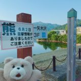 【ダム巡り】矢木沢ダム(群馬県)利根川水系で最大級 (ゲートに門限があるので注意)ドライブ動画あり