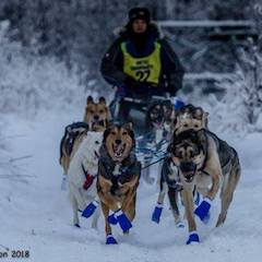 Cousins Pan and KP leading me in the Knik 200
