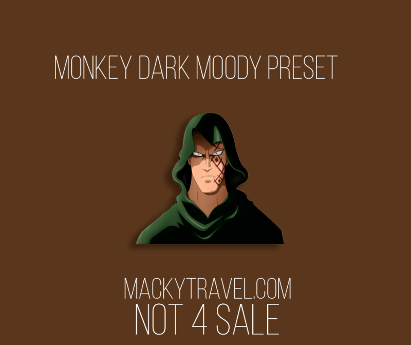 Monkey Dark Moody Lightroom Mobile Preset