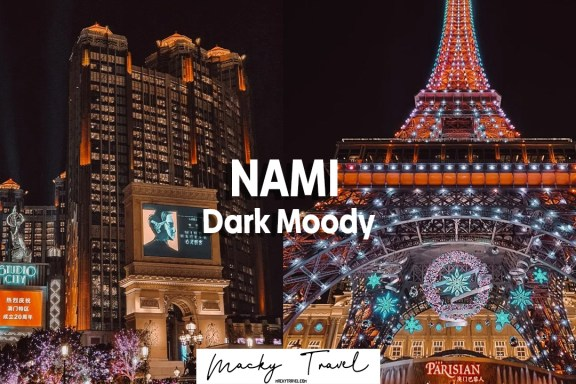 nami dark moody lightroom preset
