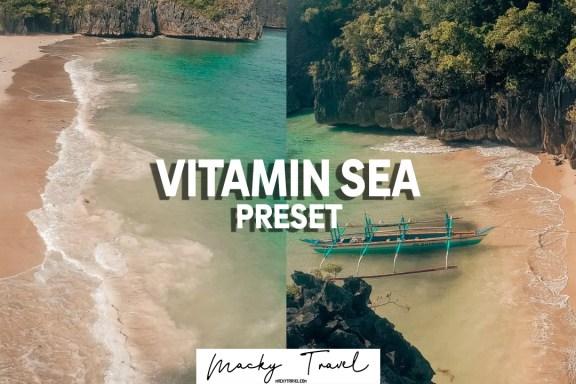 vitamin lightroom preset