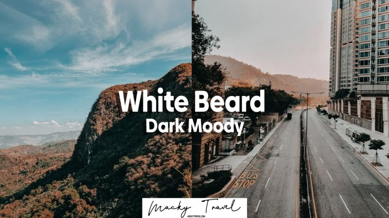 white beard dark moody lightroom preset
