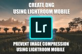 create dng using lightroom mobile