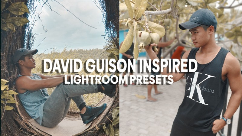 david guison inspired lightroom presets