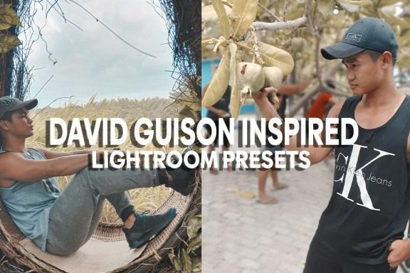 david guison inspired lightroom presets