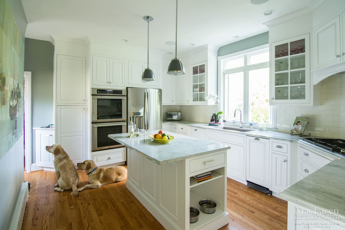Inviting Kitchen For People Amp Pets Too Wayne Pa