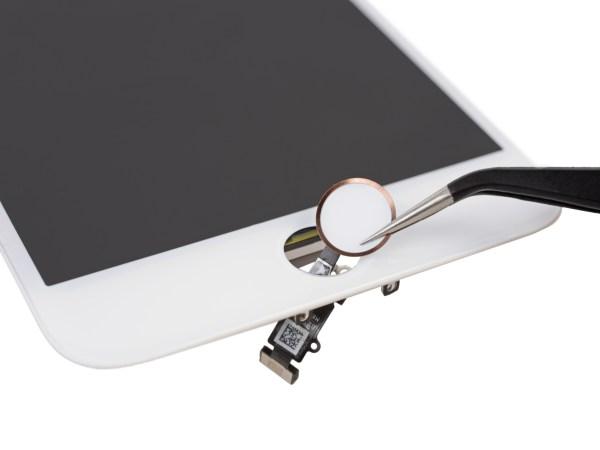 Desmontagem do iPhone 7 Plus feita pela iFixit