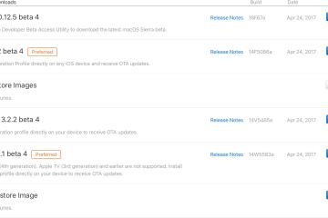 Nova leva de compilações beta