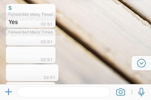 Futuro recurso para coibir spam no WhatsApp