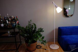 Ascend Floor Light
