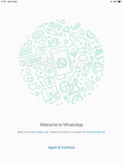 Screenshot do WhatsApp para iPad