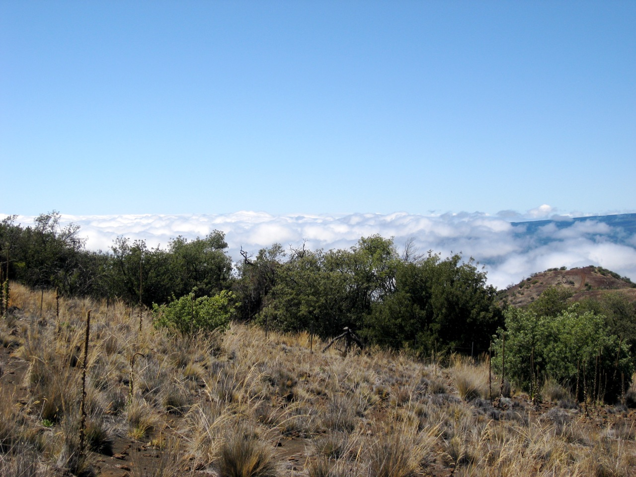 The View from the Mauna Kea Visitor Center (2)