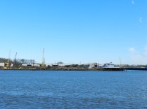 Savannah River 2