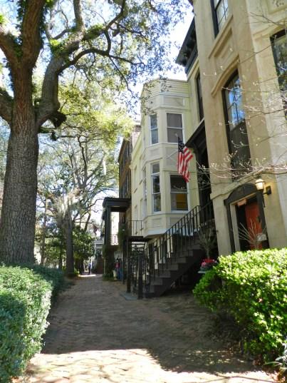 Savannah Street 3