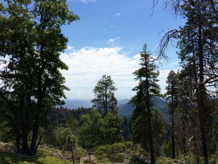 Moro Rock Trail 3