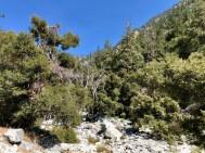 Ice House Canyon Trailhead 2