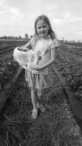 Isobel Deal Strawberries Elliot Farms