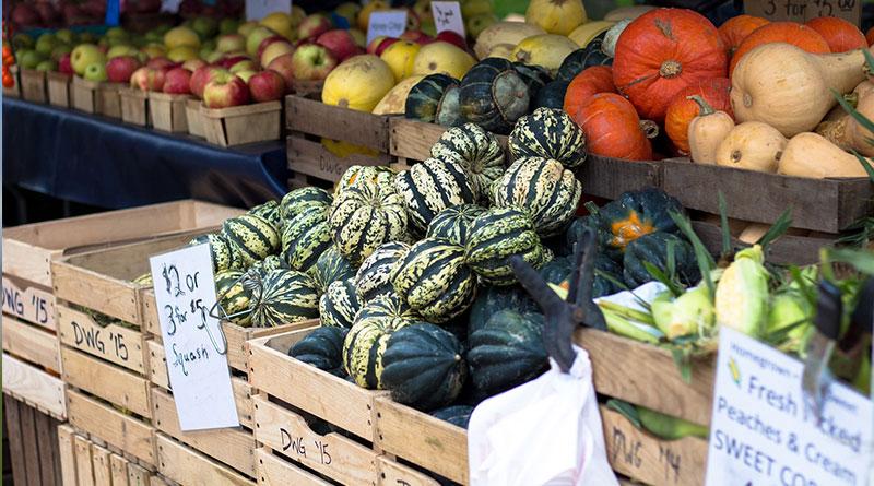 legumes automne ma conscience écolo