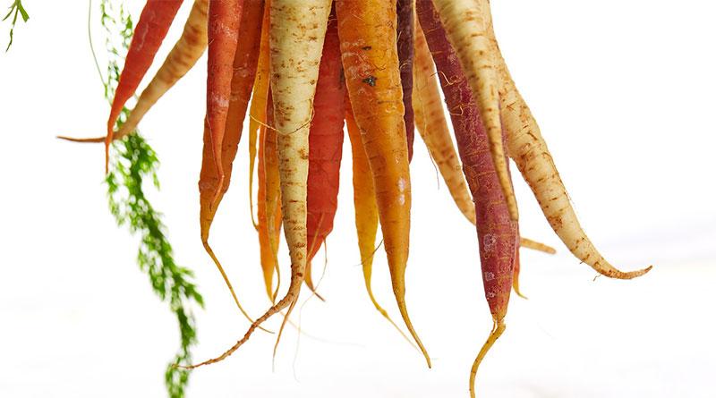Comment réduire le gaspillage des fruits et légumes ?