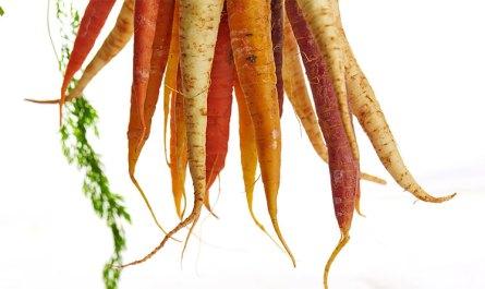 Comment limiter le gaspillage des fruits et légumes ?