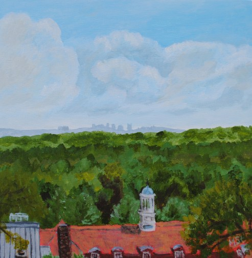 Nashville Skyline from Cheekwood