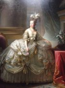 be4d3be04d7621f34bd61d5fa09fd110--marie-antoinette-queen-of