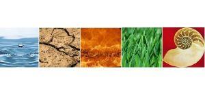 curso macrobiótica: Las 5 transformaciones