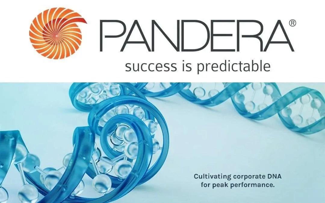Pandera Systems Announces E.C.O. NEWS