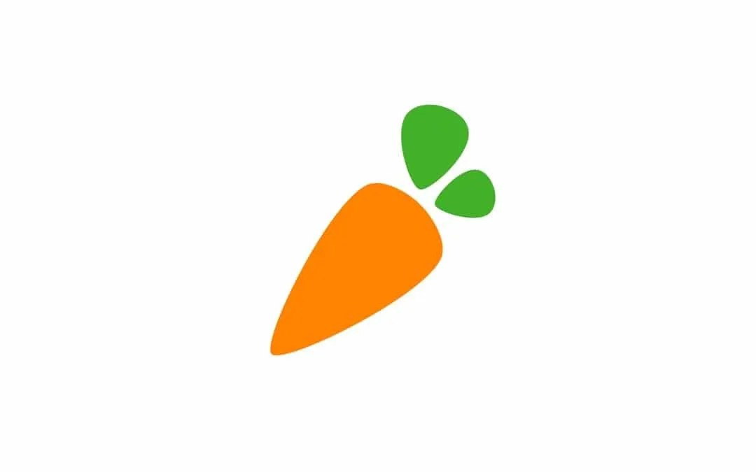 Instacart Grocery Delivery REVIEW