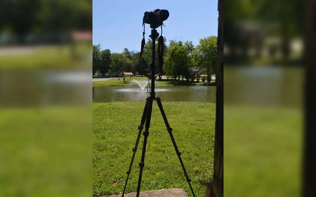Zecti ZT-006 Camera Tripod REVIEW