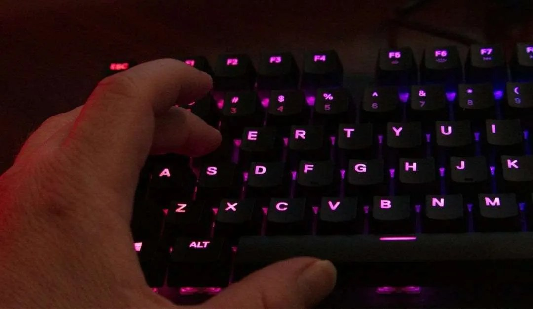 SteelSeries Apex M750 TKL Mechanical Keyboard REVIEW