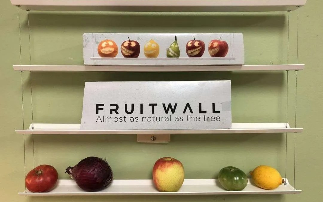 Fruit Wall REVIEW  Functional Food Art at its Best