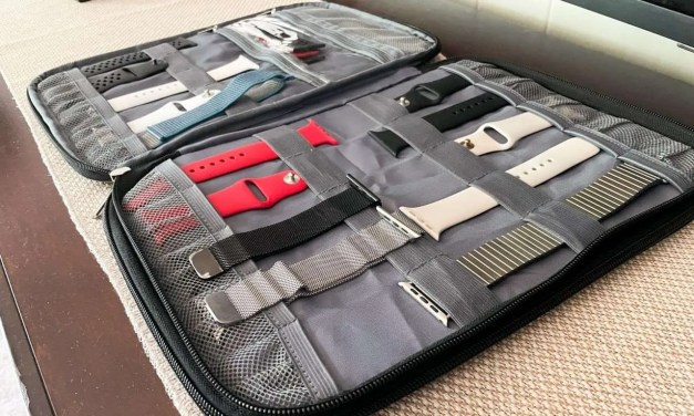 BGTREND Watch Band Carrying Case REVIEW