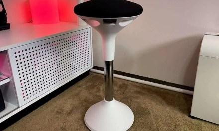 Sun-Flex Active Chair REVIEW