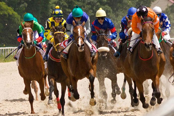 Oakbank Racecourse